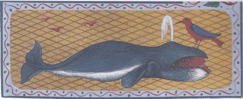 baleine.jpg