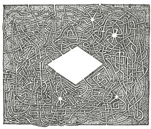 pol 2.jpg