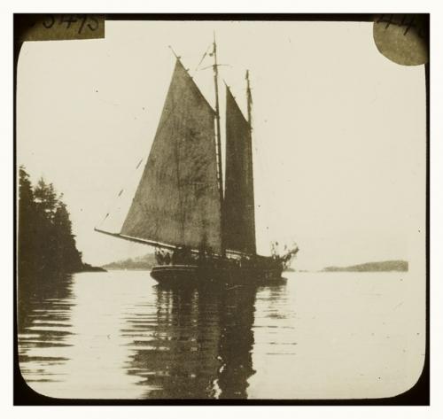 schooner-yacht-casco.jpg